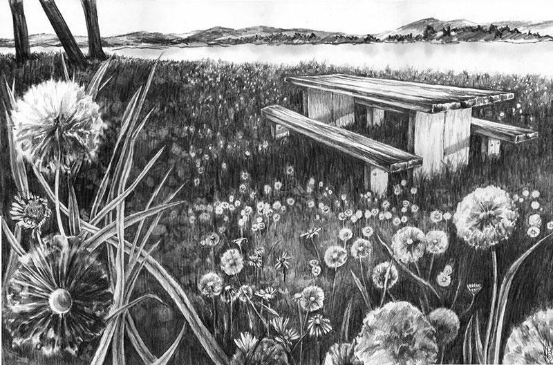 Dandelion Picnic Sketch J1505